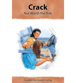 """""""Insight: Crack-Not Worth the Risk"""" Booklet"""