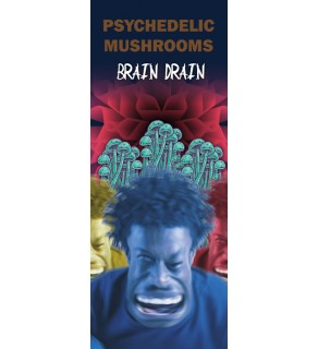 In the Know: Hallucinogens, Out of Your Mind Pamphlet
