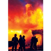 """Team Up for Fire Safety"" (for adults) DVD"