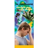 "In the Know -""Marijuana: Stone-Cold Stupid"" Spanish Pamphlet"