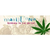 Marijuana: Get Straight on the Facts Pamphlet     SPANISH Version