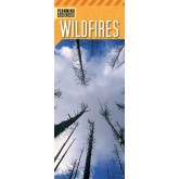 """Planning Ahead: Wildfires"" Pamphlet"